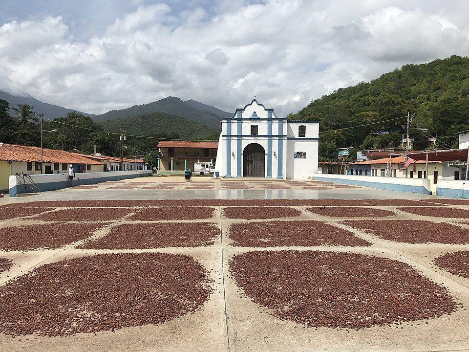 ¿Sabías que el mejor cacao del mundo es venezolano? Plaza de secado de Chuao.