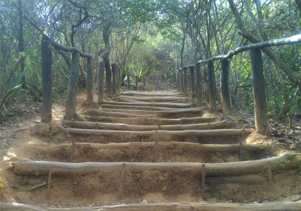 Escalinata en el camino a Sabas Nieves