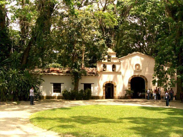 Parque de La Exótica Flora Tropical