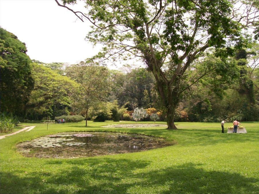 El parque cuenta con más de 5.000 plantas de 250 especies