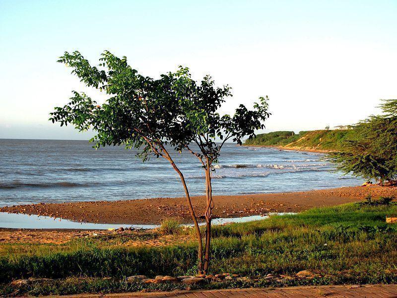 Playa de La Vela