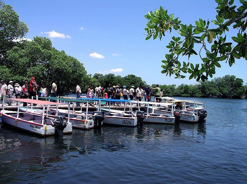 Embarcadero en la Laguna de La Restinga