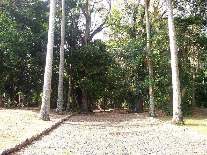 Parque Arqueológico San Felipe El Fuerte