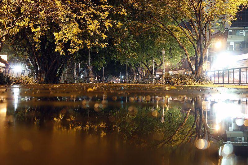 Lluvia en la Avenida Las Delicias